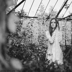 Daydreams by Gabrielle-Grace