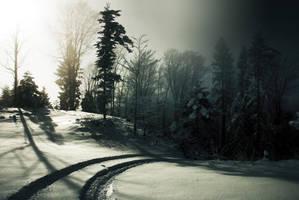 path to nowhere by CaveCanem42