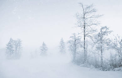 whiteout by CaveCanem42