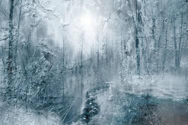 Cold Forrest by CaveCanem42