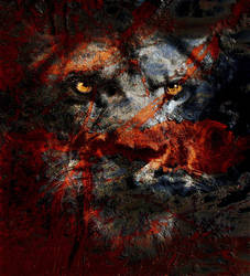 Lion by CaveCanem42