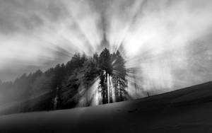 Outshining by CaveCanem42