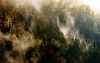 Herbst by CaveCanem42