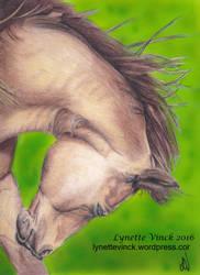 Horse by whiterayven