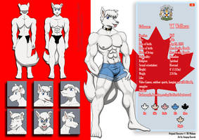 COMMISSION: Character Sheet TK by Anupap