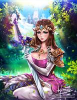 Zelda - Twilight Princess by Reivash