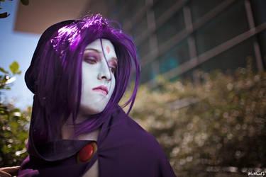 Raven by Chauncaaa