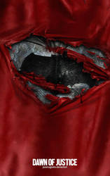 Batman v Superman:dawn of justice fanmade by punmagneto
