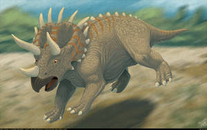 Triceratops Running by thazumi
