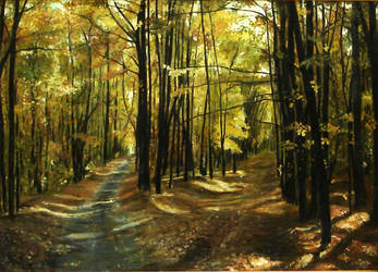 Forest in Anin by wiewiorka