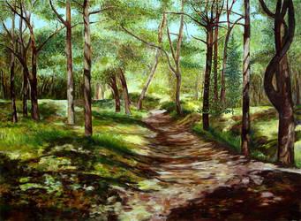 Jurata. Forest 1. by wiewiorka