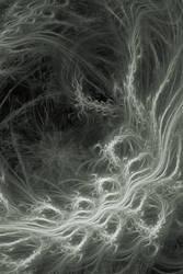 Storm by grainie