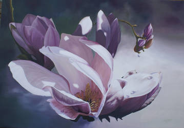 MAGNOLIA FLOWERS by Mendrinos