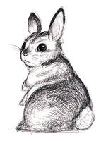 Ballpoint Bunny by jojoseames