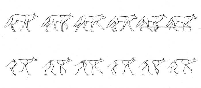 Wolf walking cycle by Axxirah