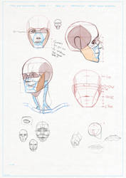 Head construction study_1 by BendikDraws