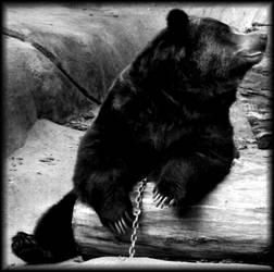 Chained Bear Love by Aziot