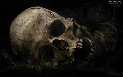 Bone garden by silver87