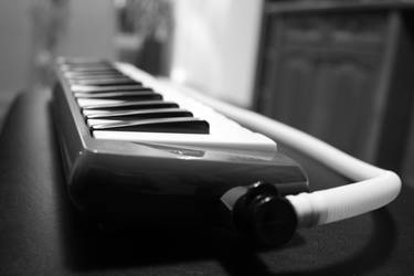 Hohner Student 32 Melodica by pwuerrer