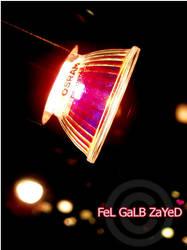 W'9oo7 by FeL-GaLB-ZaYeD