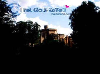 mY-KingDom by FeL-GaLB-ZaYeD