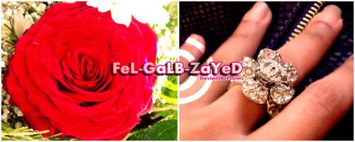 7obbY-eL-AwwaL by FeL-GaLB-ZaYeD