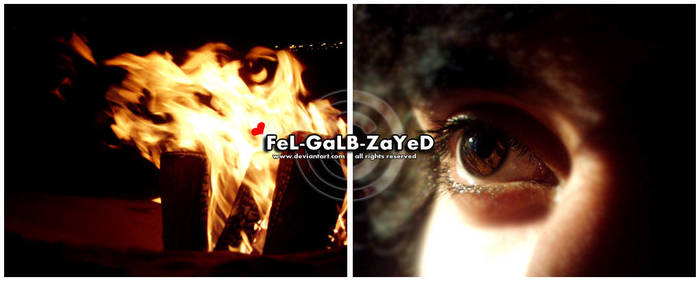 NaR .. by FeL-GaLB-ZaYeD