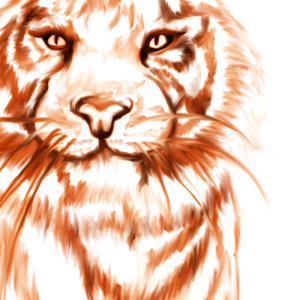 geovanialdrighi's Profile Picture