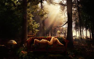 Hibernation by eN-1