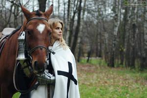 Teutonic knight by Angmara