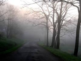S.S. Foggy Scene - 8 by shudder-stock