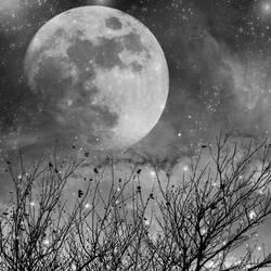 In dreams by AnnAquamarine