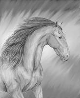 Friesian horse by LimeLit