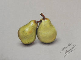 Pears DRAWING by Marcello Barenghi by marcellobarenghi