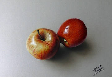 3D drawing - apples by marcellobarenghi