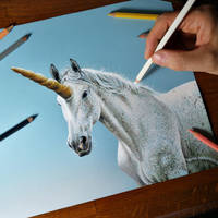 UNICORNS are REAL, this is a drawing from life by marcellobarenghi