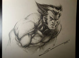 WOLVERINE by Sandoval-Art