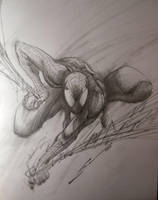 SPIDERMAN SKETCH by Sandoval-Art