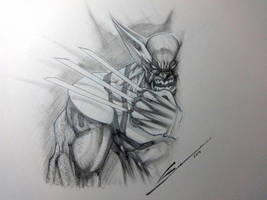 Wolverine sketch by Sandoval-Art