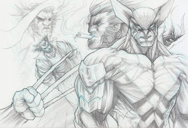 Wolverine Collage by Sandoval-Art
