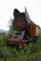 abandoned locomotive II by senner