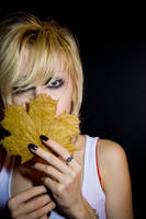 Maple leaf portrait stock by EK-StockPhotos