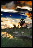Surreal Florida by medveh