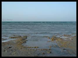 Uqair Sea by Amwag