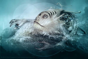 Creative Flood by fensterer