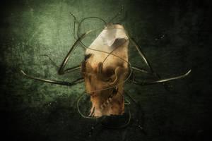 Pesticide by fensterer