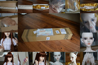 Mi Box Opening Collage by xXTiraLynnXx