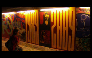 sziget festival-berlin's wall by b-r-u-t-a-l