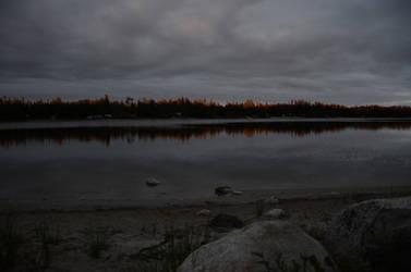 Nellie Lake sunset on trees by Anya-Hildebrandt