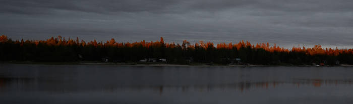 Sunset on trees by Anya-Hildebrandt